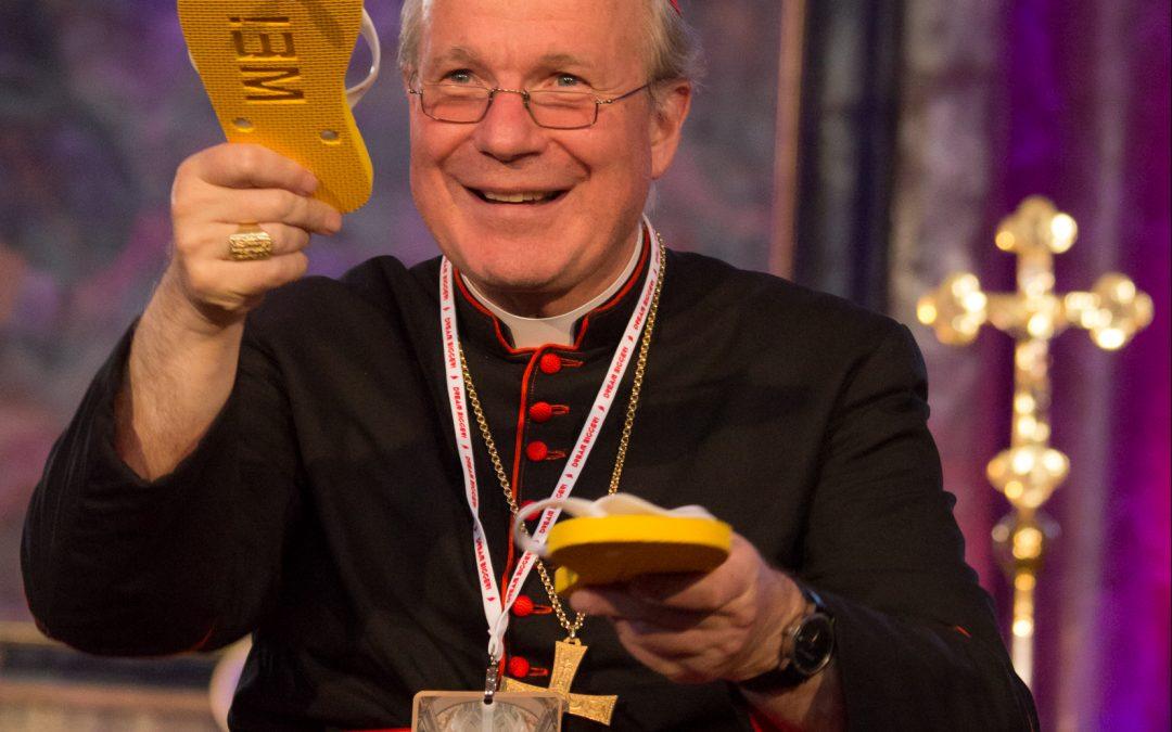 Kardinal Christoph Schönborn, Erzbischof von Wien